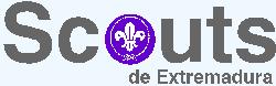 El PP presentará una moción para apoyar la concesión a los scouts de la Medalla de Extremadura