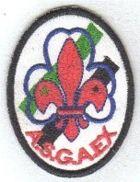 Asamblea Extraordinaria ASGAEX